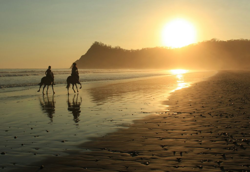 10 days Horseback riding