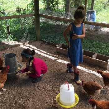 Monte Claro Farm