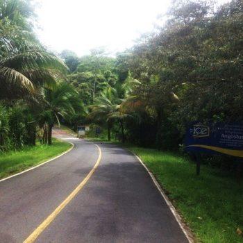 Route menant à l'accueil de l'Hacienda Monte Claro