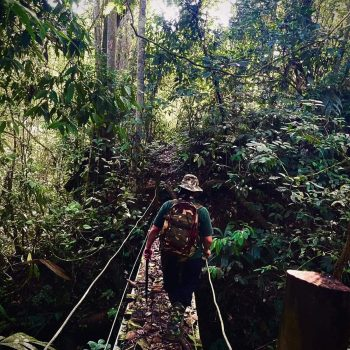 Trail Ceiba - Hacienda Monte Claro