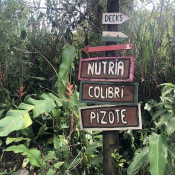Trails - Hacienda Monte Verde